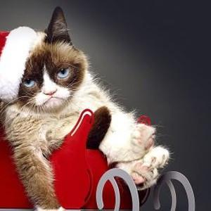 Ho No, It's Christmas