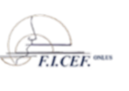 logo FICEF.png