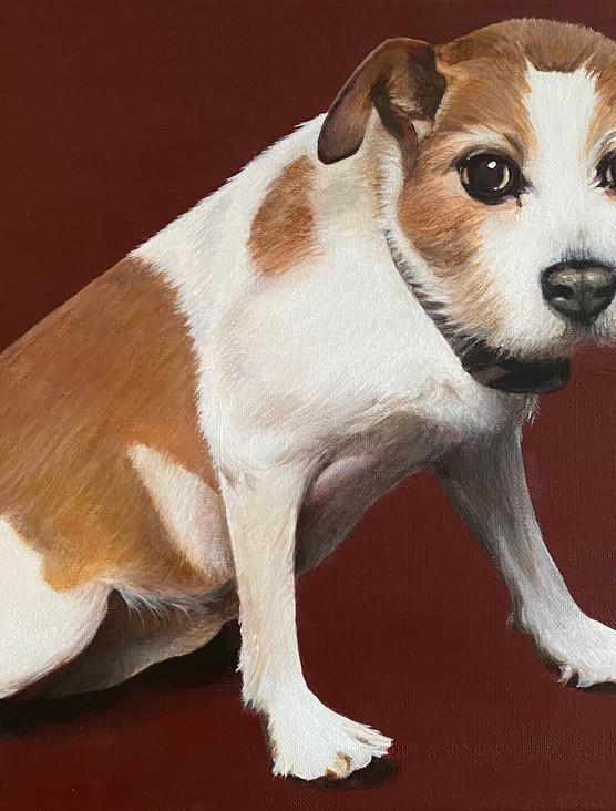 Nellie  40 x 30cm  Acrylic on Canvas
