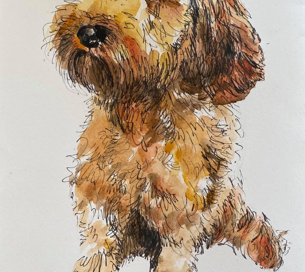Pippa A4 Ink and Watercolour