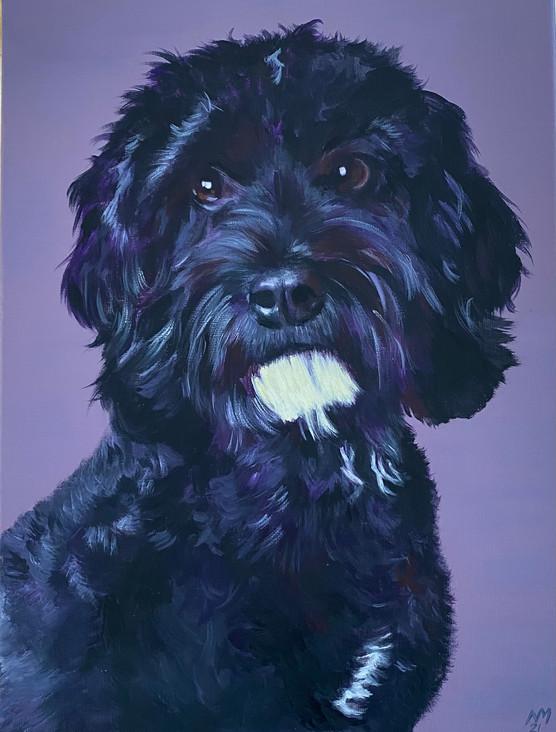 Maisie  40 x 30cm  Acrylic on Canvas