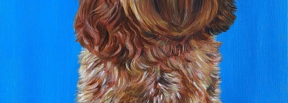 Pippa  40 x 30cm  Acrylic on Canvas