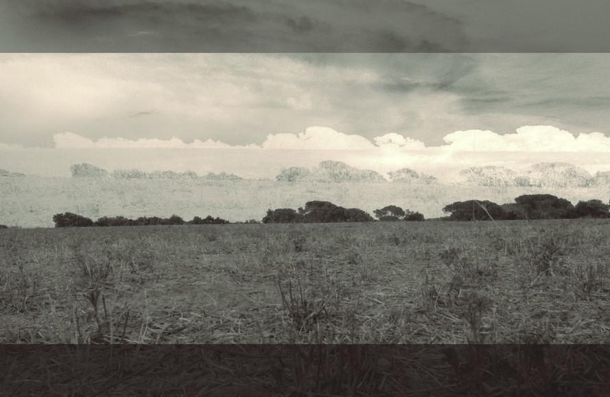 terra 22.jpg