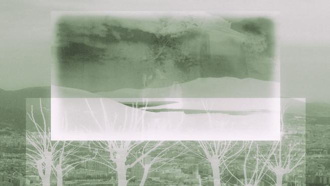 Rare arbres 10.jpg