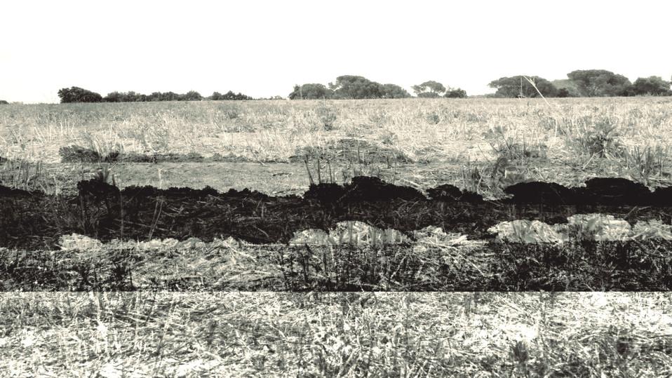 terra 16.jpg
