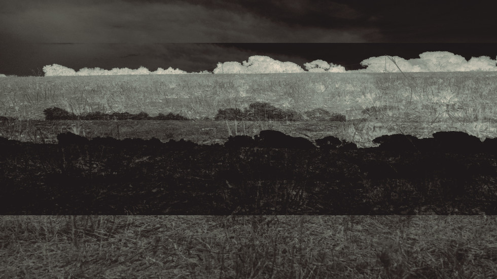 Terra 11.jpg