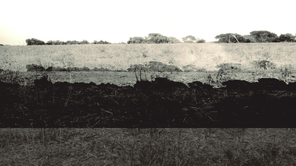 Terra 8.jpg