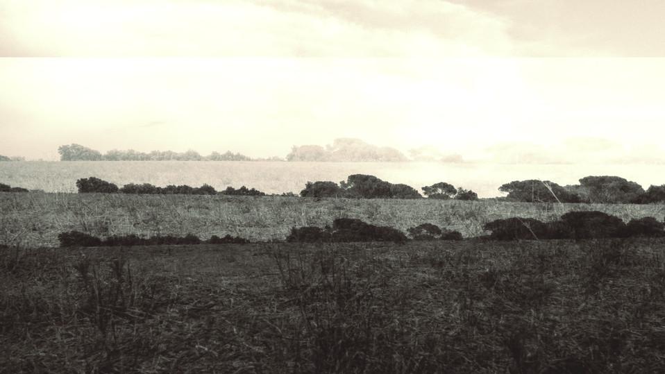 terra 18.jpg