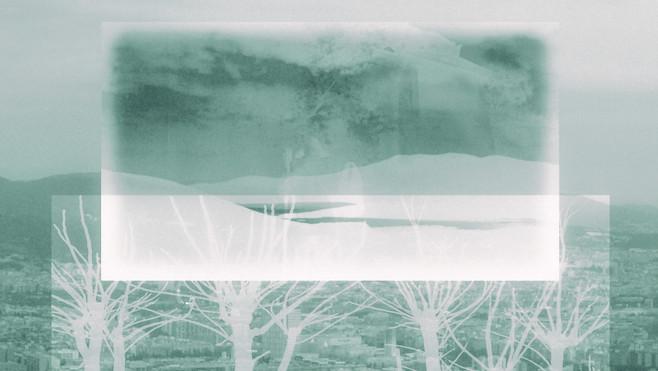 Rare arbres 17.jpg
