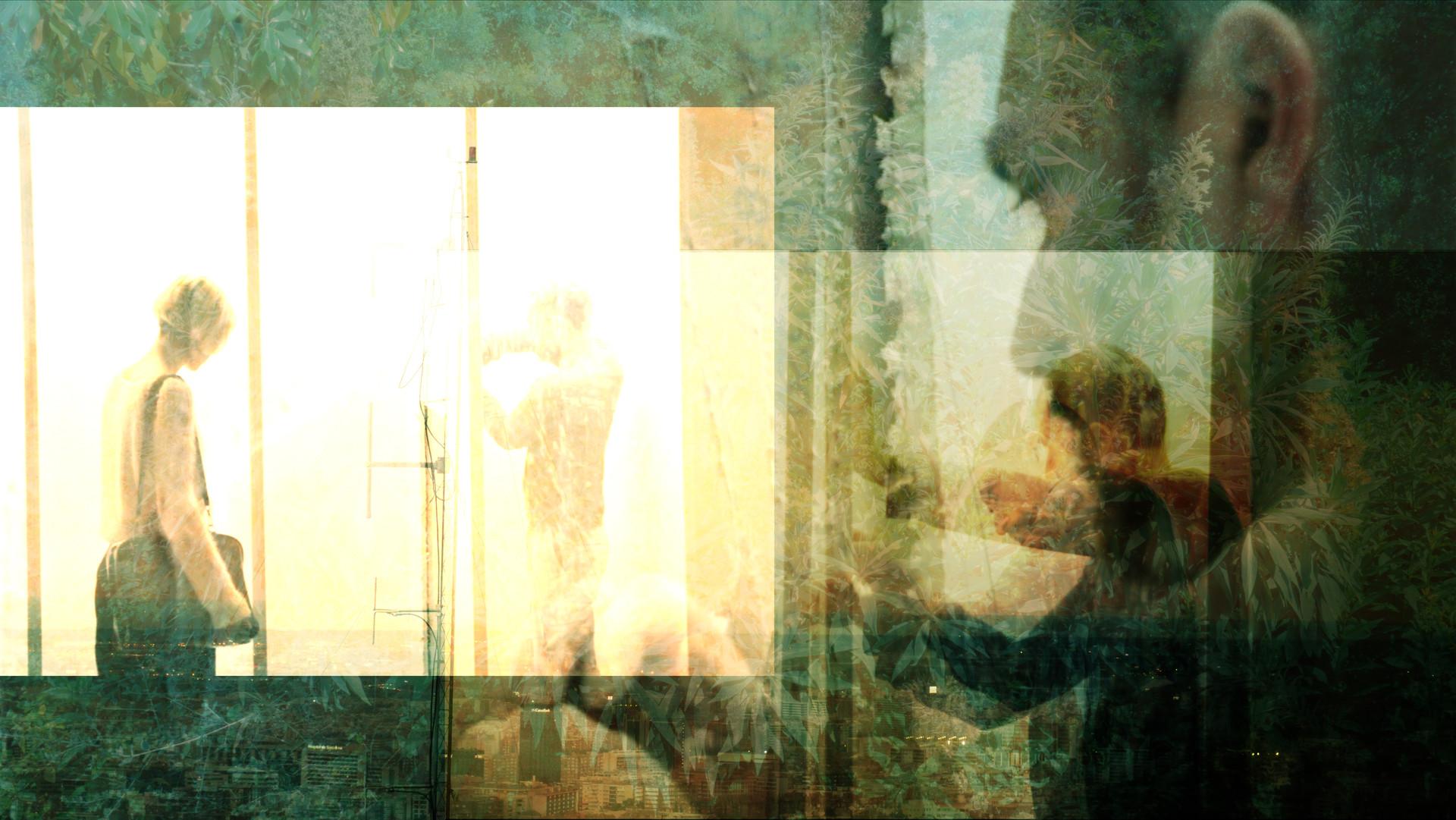 multiyanis 5.jpg