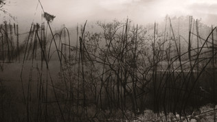 paisatges 32.jpg