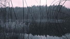 paisaje 9.jpg
