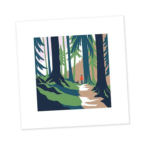 Forest Walk print
