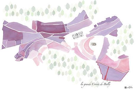 Carte Rouge Bourgogne Domaine Pavelot co