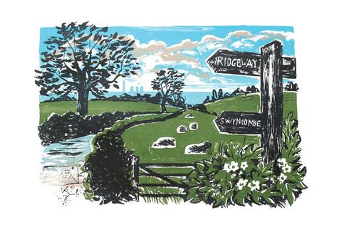 Swyncombe Sheep