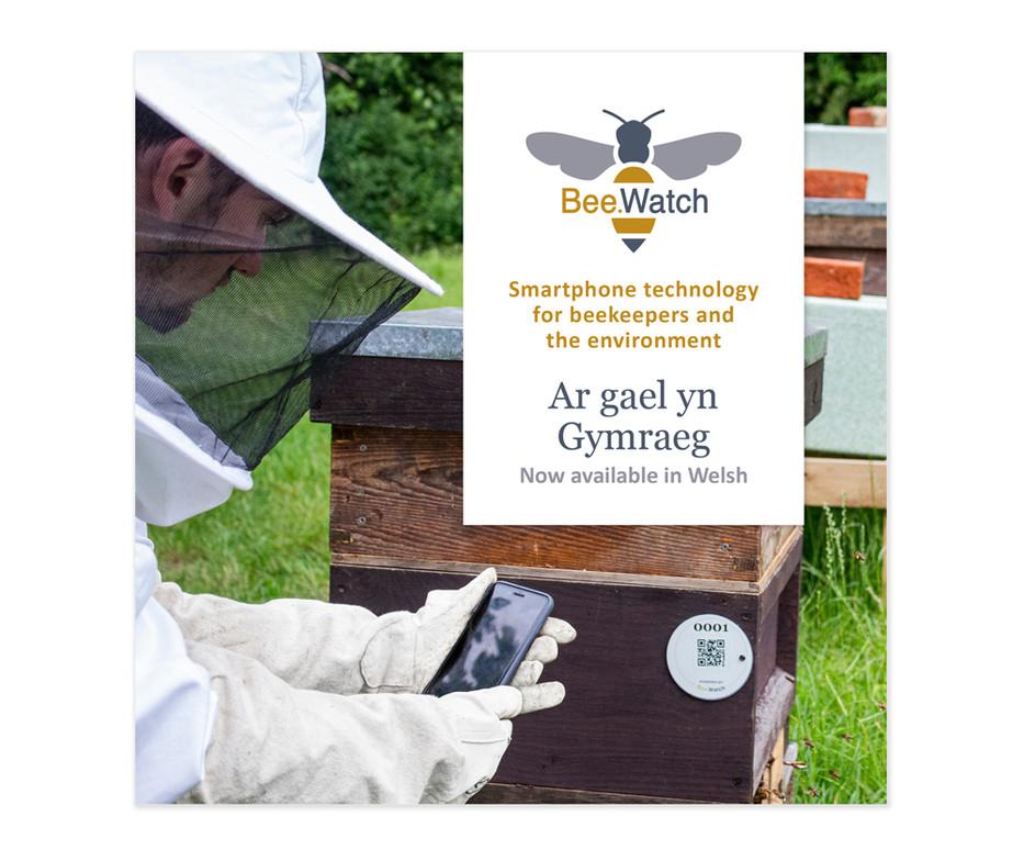 Bee'Watch social media