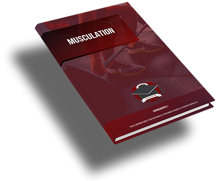 Ebook-musculation-gif.png