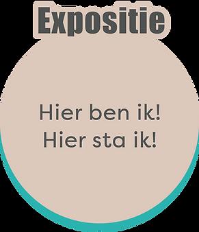 website_pagina galerie_stichting RISE_de