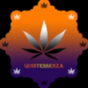 QUINTA ESSENZA 2.0.png