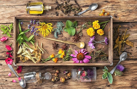 roish-herbal-apothecary-and-nutritional-