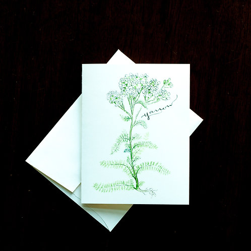 Yarrow Watercolor Notecard