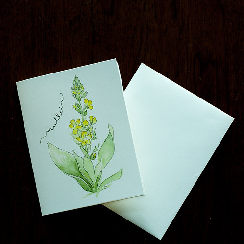 Mullein Watercolor Notecard
