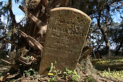 historic-gould-cemetery-harris-neck-ga-m