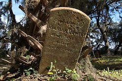 historic-gould-cemetery-harris-neck-ga-m