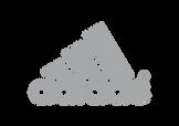 Adidas Website logo final.png