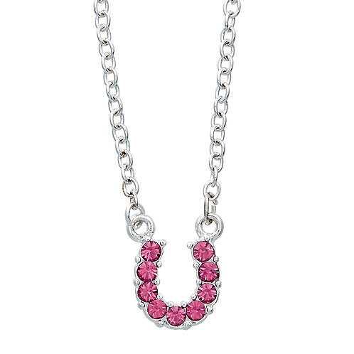 Pink Horseshoe Necklace