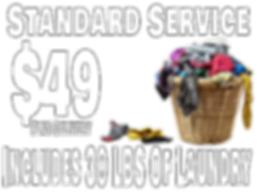 Standard Service (1).png