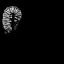 imaginal_logo.png