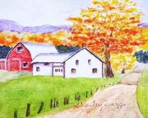 Boyden farm _edited-2.jpg