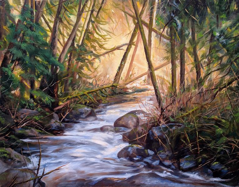 Wallace Falls Brook