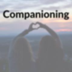 companion.png
