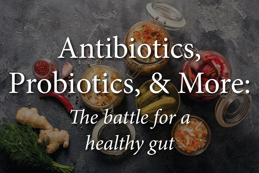"""A table of common probiotics with the text: """"Antibiotics, Probiotics, & More: The battle for a healthy gut""""."""