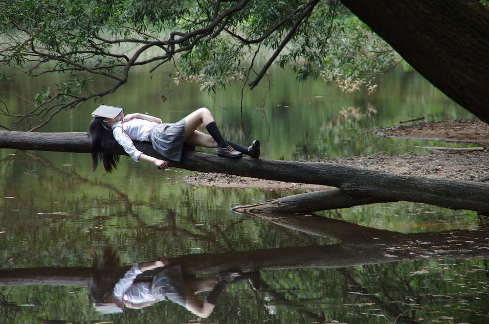 Woman with book covering her face sleeping on a log.