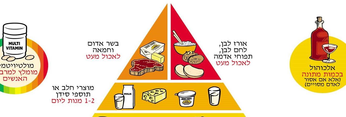 תזונה נכונה לאורח חיים בריא