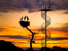 Stork Nest Sunset