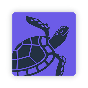 turtle_round2.png