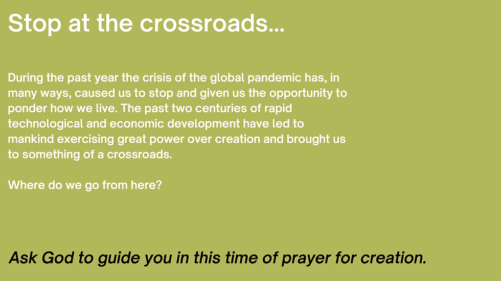 247 Hope for Creation_Page_2.png