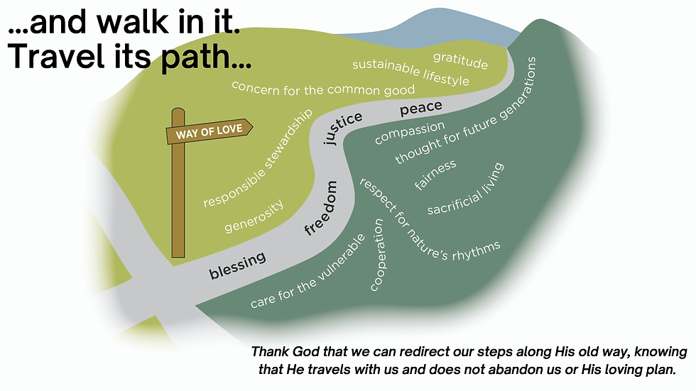 247 Hope for Creation_Page_6.png