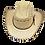 Thumbnail: Mustang | 004