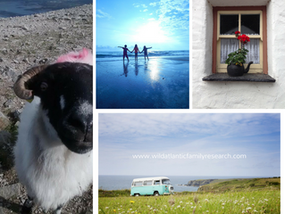 Coming to visit us in Ireland? Here are a few things you can expect this time of year