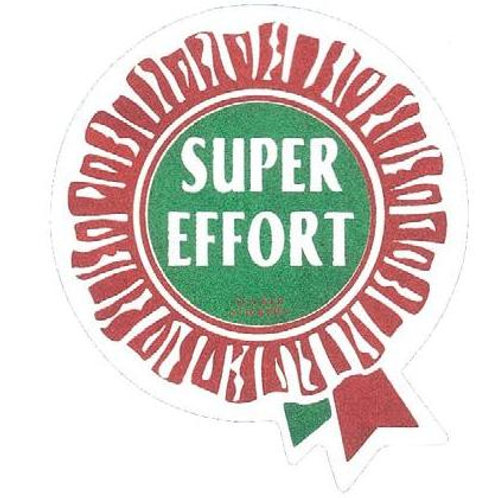 Super Effort Metallic Rosette Stickers  (221)
