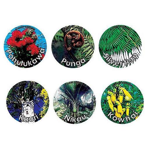 New Zealand Native Tree Stickers  (920)