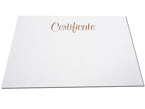 A4 Pewter Certificate Testa'mur with Gold Foil  (1070)