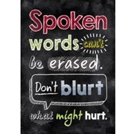 Spoken words cant be Erased Poster  (6749)