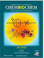 chem bio chem cover 2018_edited.png