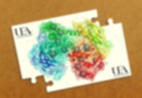 P1070422 puzzle 1 corrected.jpg